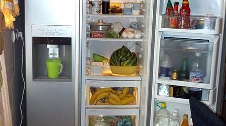 Fridge_Kelkar