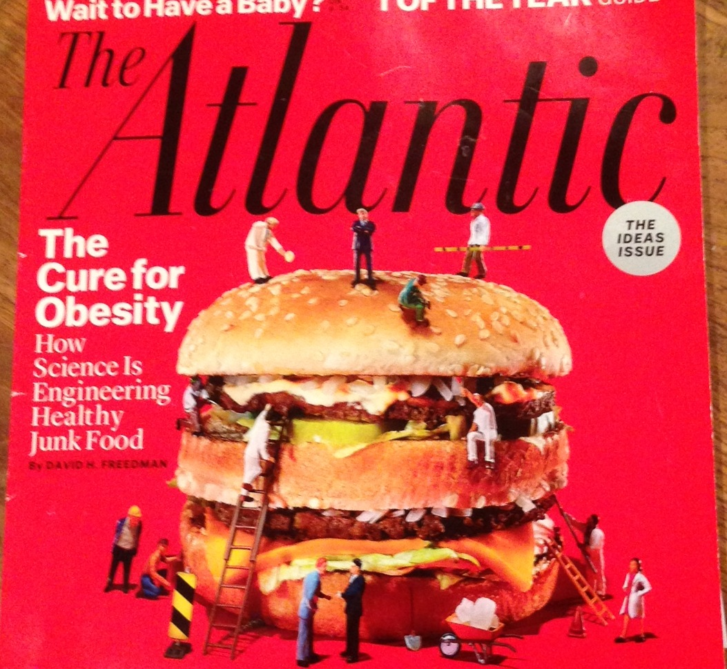 How Junk Food Can End Obesity Science Meets Food