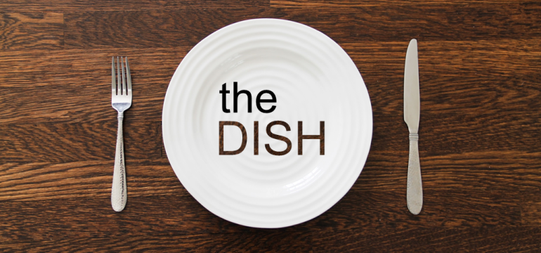The Dish Cover6
