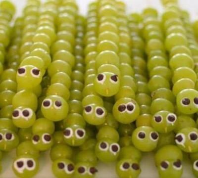 grapecaterpillar-400x393